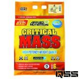 Critical Mass (6kg)